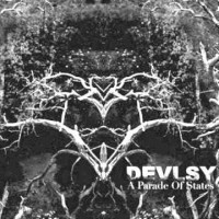 DEVLSY - A Parade Of States  CD